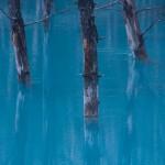 青い池 その1